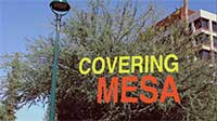 CoveringMesa_web